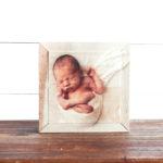 6″ x 6″ shimlee. Wood Print