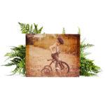 10″ x 8″ shimlee. Wood Print