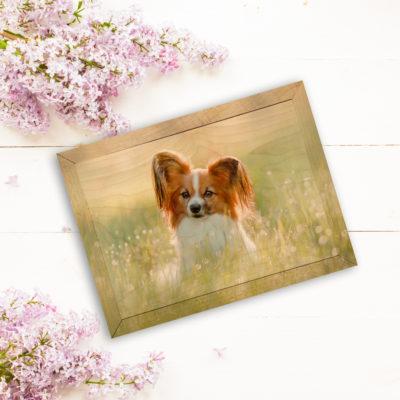 7x5 cute dog wood photo print