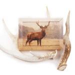 7″ x 5″ shimlee. Wood Print