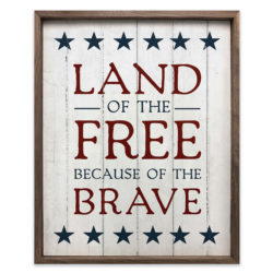 Land of the Free White 8x10 and 1620